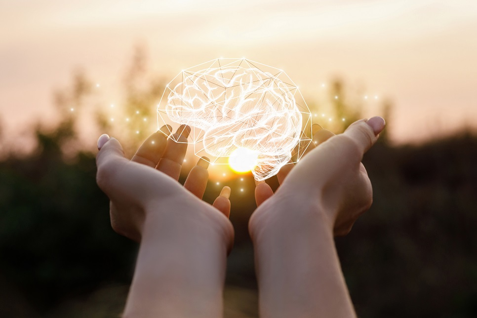 Growing Emotional Intelligence